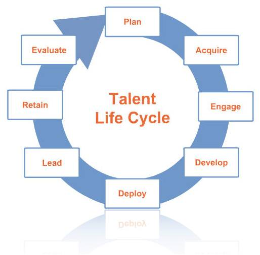 Talent Management System Solutiondots