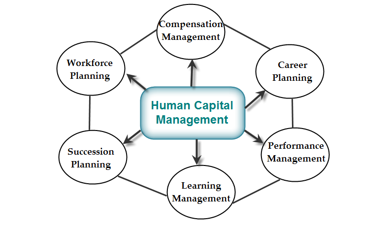 Human Capital Management System Hcms Importance