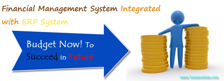 Financial Management ERP System