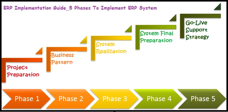 Erp Implementation Case Study How To Implement Erp