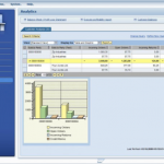 SAP Business All-in-One Software