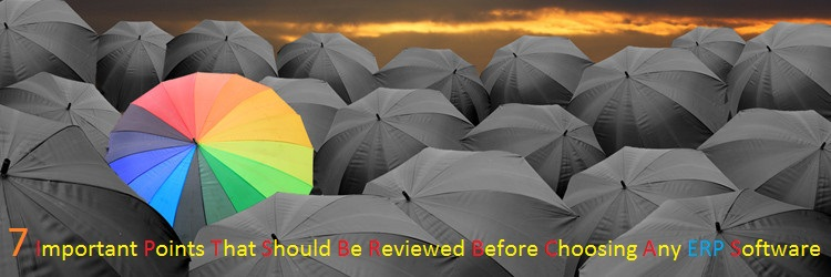 7 important points that should be reviewed before choosing any ERP software