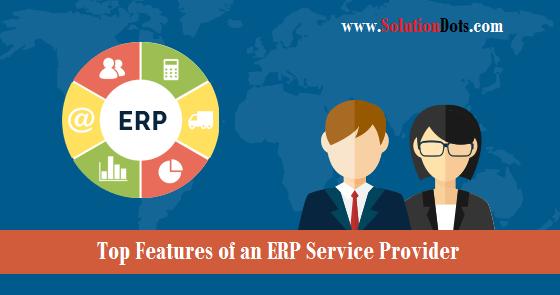 ERP Service Provider