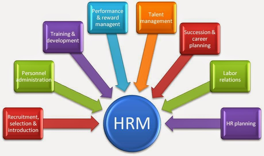 Erp Human Resource Management Software In