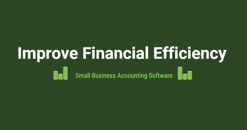 Small Business Accounting Software-feature