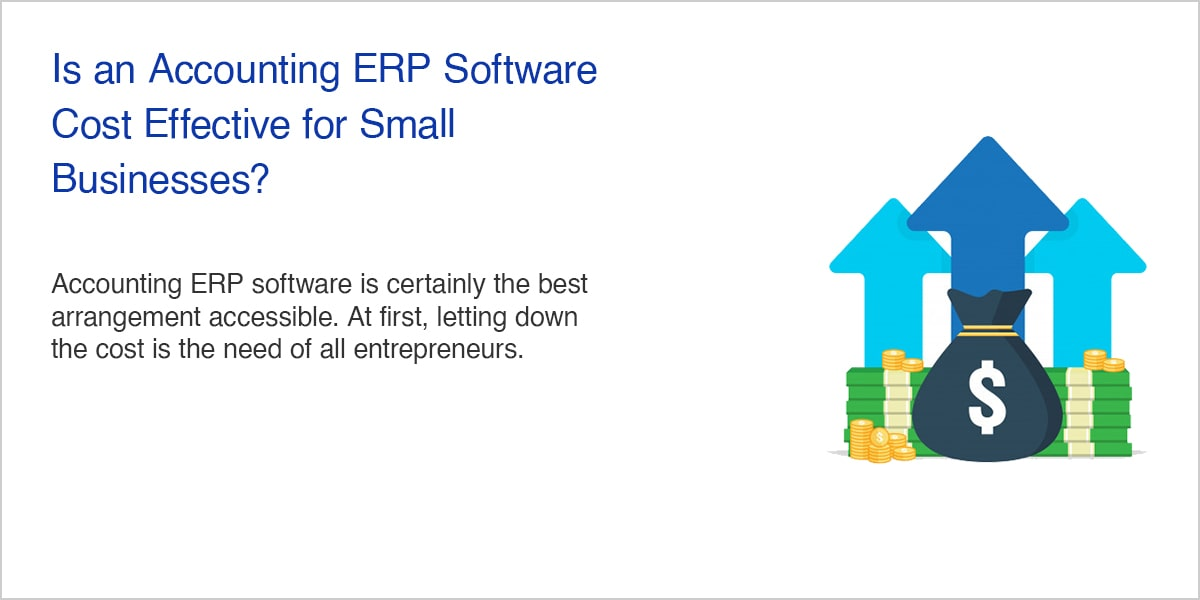 Is an Accounting ERP Software Cost Effective Businesses